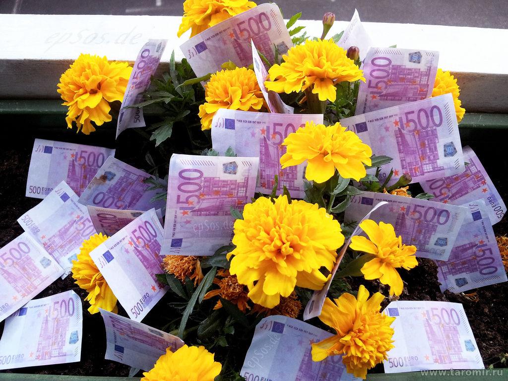 Фото с цветами за деньги